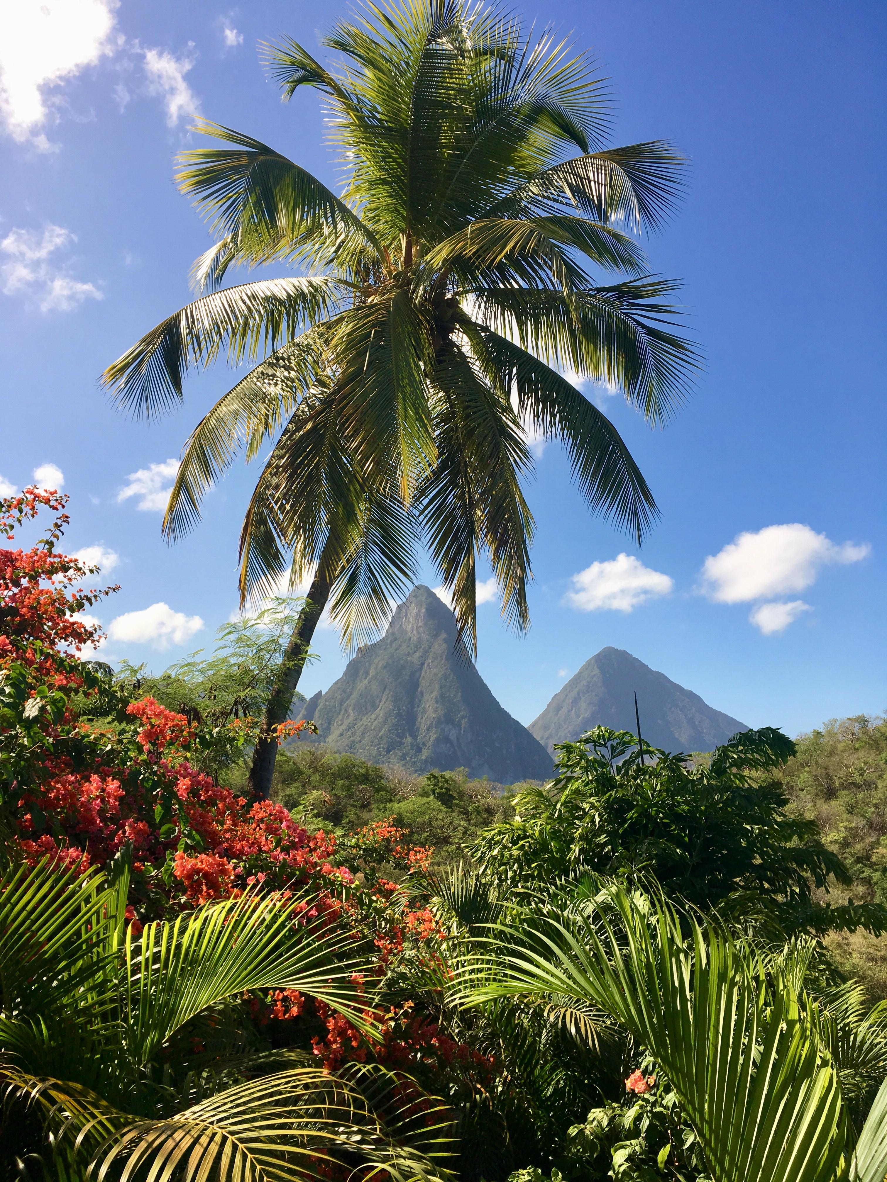 St. Lucia Anse Chastanet Resort 2018
