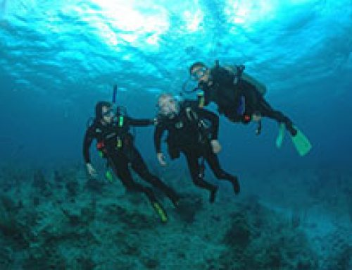 The Physical and Mental Benefits of Scuba Diving for the Disabled