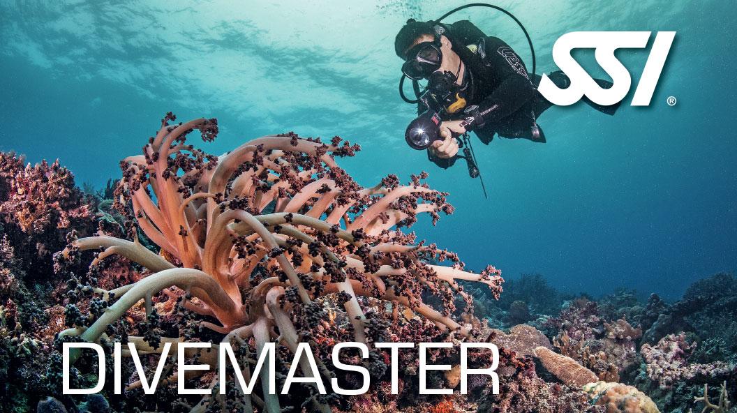 A-1 Divemaster Course