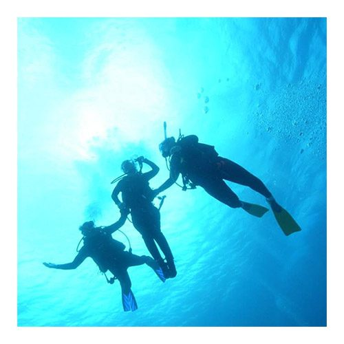 HSA Dive Buddy Course