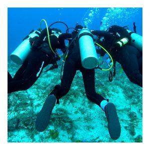 Adaptive Diver Programs