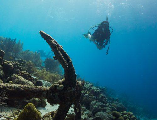 A-1 Scuba: The Best Scuba Diving School In Denver