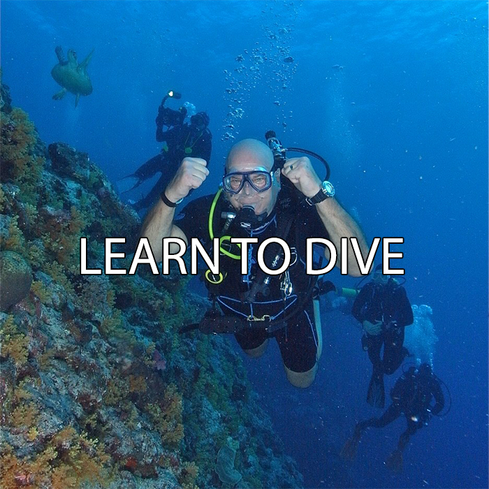 Swimming And Diving Classes In Denver Co A 1 Scuba Travel