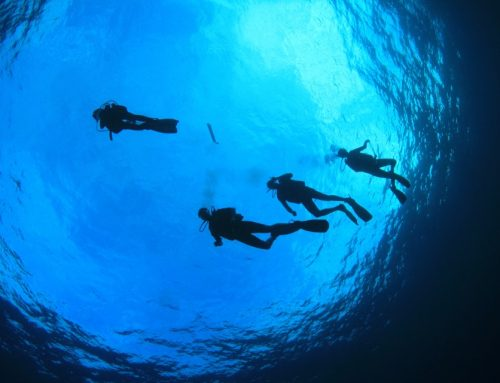 Must Do Dive Programs Offered by A-1 Scuba Travel Aquatics Center