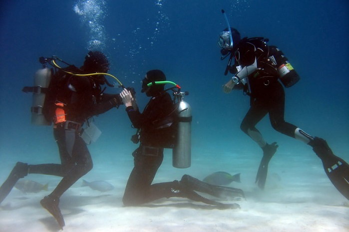 What Does Scuba Diving Certification Cost A 1 Scuba