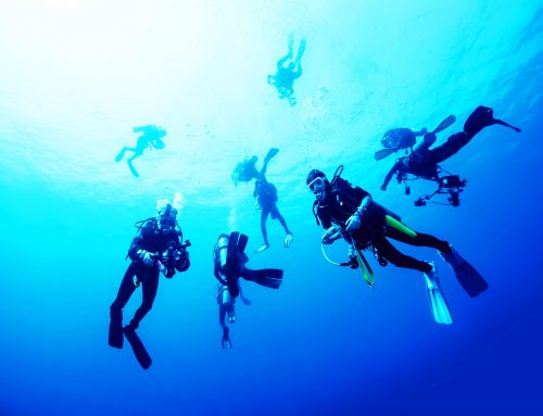 Looking to Explore the Deep Blue? Sign Up for Diver Courses