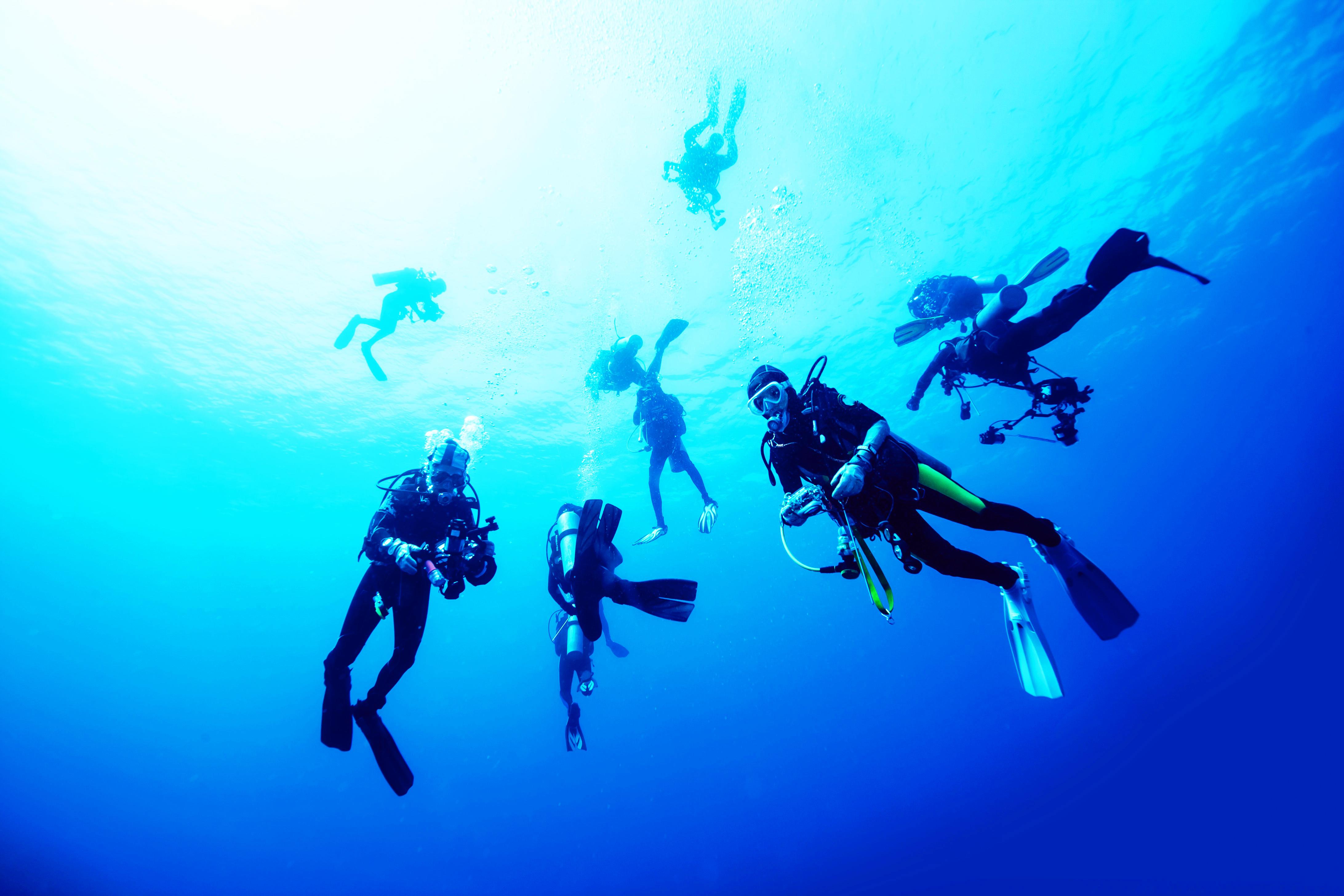 diver courses
