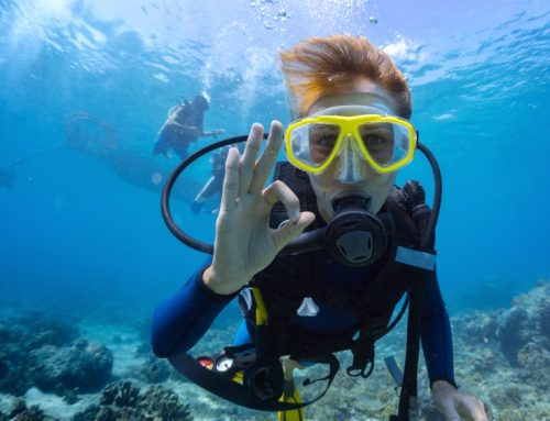 Scuba Diving Curacao: Join A-1 on a Caribbean Getaway