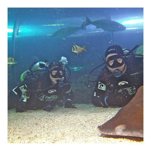 Scuba Review at the Downtown Aquarium