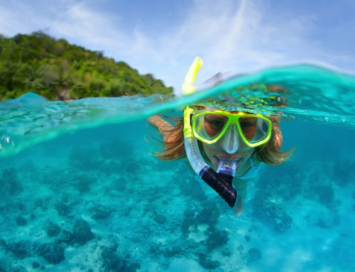 Snorkeling & Scuba Diving Essentials for Beginners