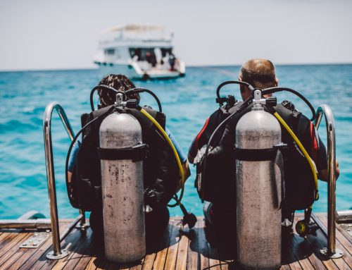 Common Questions Asked by Non-Scuba Divers