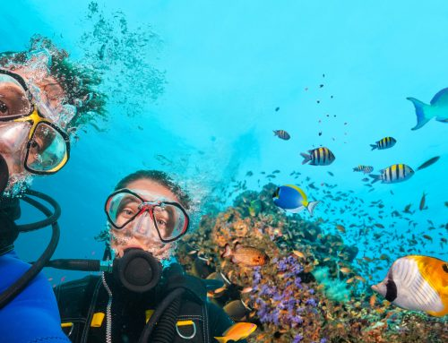 Scuba Diving Mistakes to Avoid This Summer
