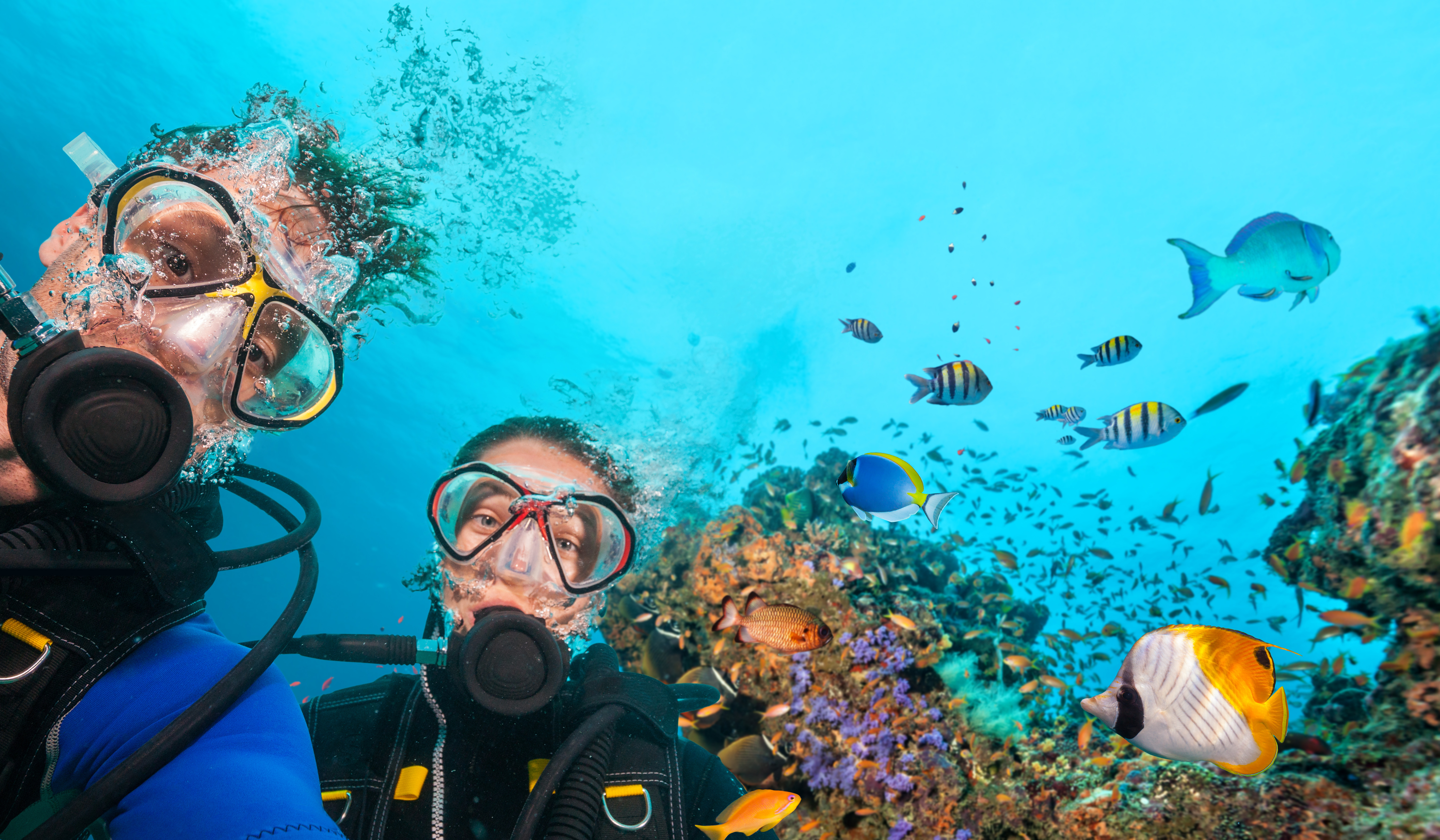 Scuba Diving Mistakes To Avoid This Summer A 1 Scuba Travel